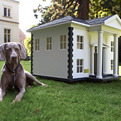Luxury-barkitecture-10-amazing-elaborate-dog-houses-s