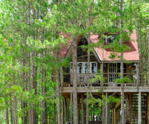 Lynn-knowltons-eco-friendly-tree-fort-m