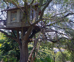 Magical-treehouse-within-a-fairytale-garden-m