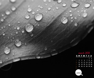 March-monthly-calendar-by-cafelab-is-out-m
