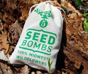 Midwest-wildflower-seed-bombs-m