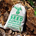 Midwest-wildflower-seed-bombs-s