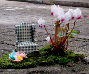 Miniature-gardening-by-the-pothole-gardener-m