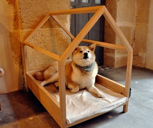 Minimal-wood-dog-bed-design-m