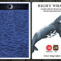 Moby-dick-the-card-game-s