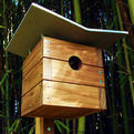 Modern-birdhouses-s