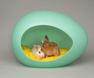 pEi Pod, Modern Pet House for Your Smallest Friends