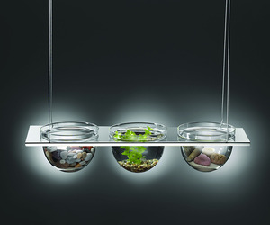 Mono-suspended-glass-bowl-displays-m