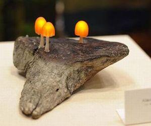Mushroom-lamp-by-chillichilly-m