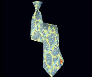Nautilus-lemon-paisley-striped-tie-m
