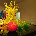 New-halcyon-gallery-debuts-with-a-chihuly-exhibit-s