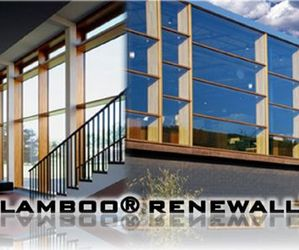 Renewall™, New  Lamboo® Product Line