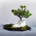 Oat-zero-footprint-plantable-sneakers-s