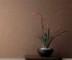 Organic-a-wall-wallpapers-from-awagami-factory-japan-m
