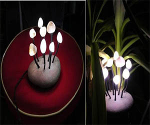 Outdoor Lighting Design – Mushrooms