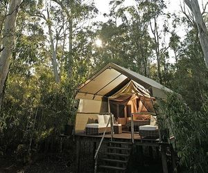 Paperbark-camp-in-new-south-wales-australia-m