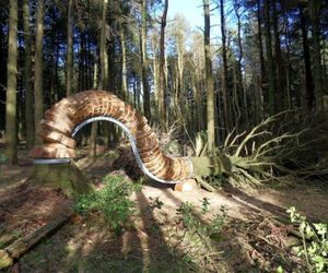 Pendle Sculpture Trail In Woods | Philippe Handford