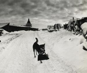 Pentti-sammallahti-photography-classics-from-finland-m
