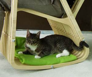 Pet-and-person-chair-m