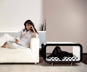 Pet-suite-furniture-by-forma-italia-m