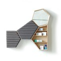 Pharmaceutical-cabinet-by-cline-forestier-s