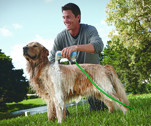 Rapidbath-dog-bathing-system-m