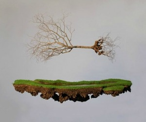 Rooted-sculptures-by-jorge-mayet-m