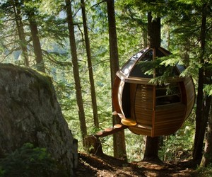 Secret-hemloft-treehouse-in-canadian-woods-m