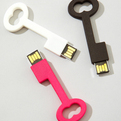 Skeleton-key-flash-drive-s