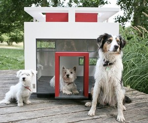 Slick-houses-modern-cubix-pets-m