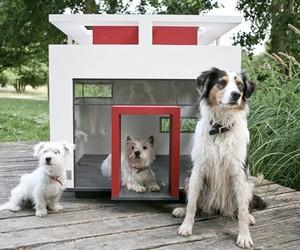 Slick-houses-modern-cubix-pets-m