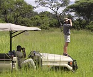 Sneak-peek-lamai-serengeti-tanzania-m
