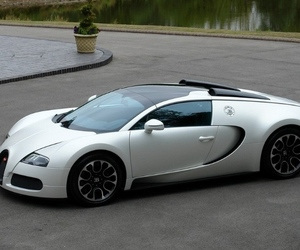 Special-edition-bugatti-veyron-sang-blanc-in-for-sale-m