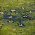 Stunning-photographs-of-the-wetlands-of-southern-sudan-s