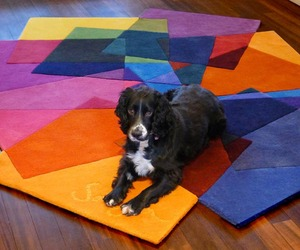 Stylish-and-colorful-rug-design-to-beautify-your-interior-m