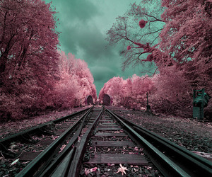 Surreal-infrared-landscape-photography-m