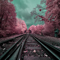 Surreal-infrared-landscape-photography-s