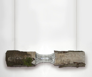 Sustainable-lamp-design-inspired-by-nature-m