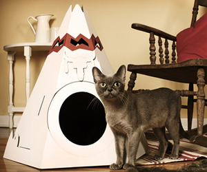 Teepees-and-cabins-for-cool-cats-m