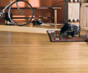 Teragren-bamboo-portfolio-flooring-in-new-country-2-m