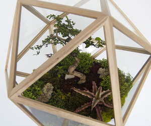 The-all-around-terrarium-m