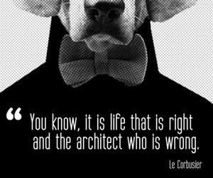The-architect-who-is-wrong-m