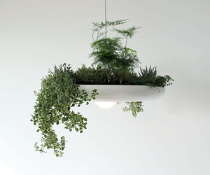 The-babylon-plantable-light-fixture-by-ryan-taylors-m