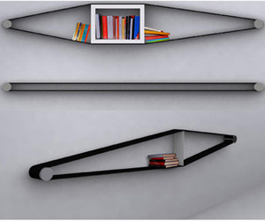 The Bookcase as Art