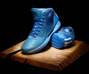The D Rose 3.5 by Adidas
