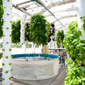 The-farm-of-the-future-a-hi-tech-living-ecosystem-s