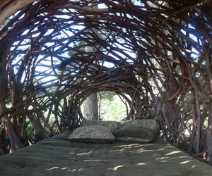 The-human-nest-at-big-sur-by-jayson-fann-m