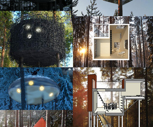 The-treehotel-opens-in-sweden-with-6-treehouses-m