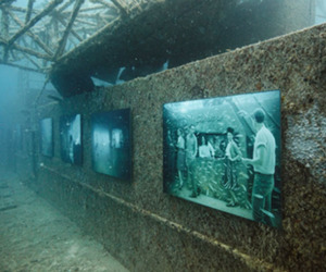 The-vandenberg-life-below-the-surface-exhibition-m
