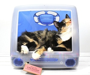 Think-different-pet-bed-by-atomic-attic-m